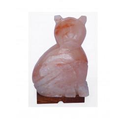 Lampada di sale a forma gatto